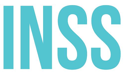Logo INSS Giải pháp số quốc tế